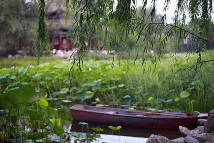 boat in pond