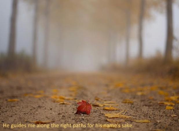psalm-23-five