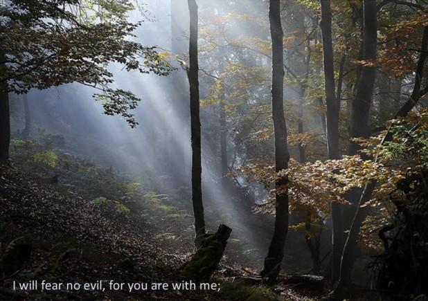 psalm-23-seven