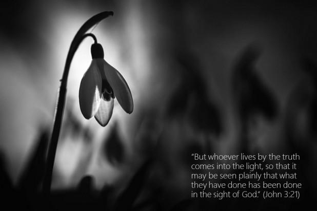 John 3 21