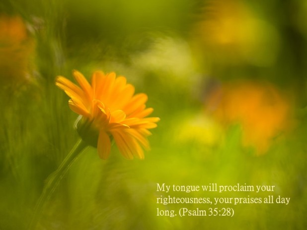 Psalm 35 28